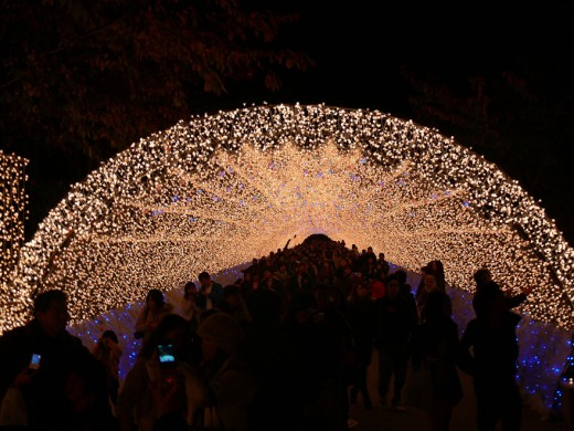 Världens häftigaste ljusshow!